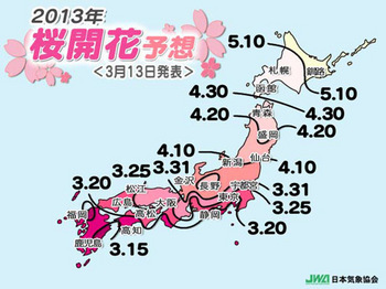 jwa_sakurazensen_2013.jpg